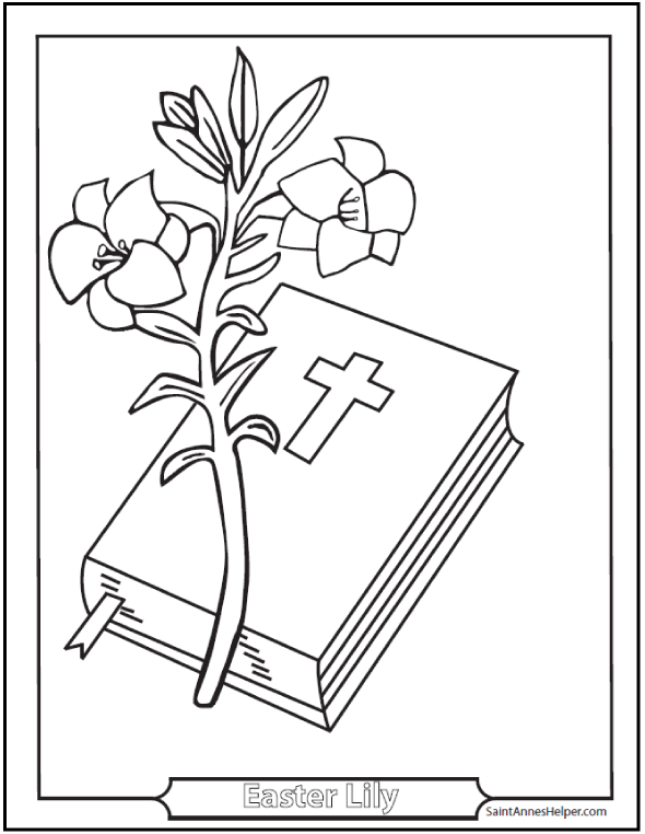 590x762 Easter Lily Coloring Page With Bible