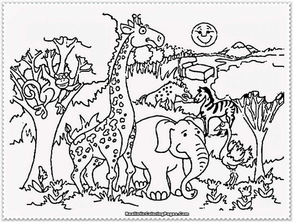 1024x778 Easy Zoo Animal Pictures To Color Largest Coloring Sheets In New