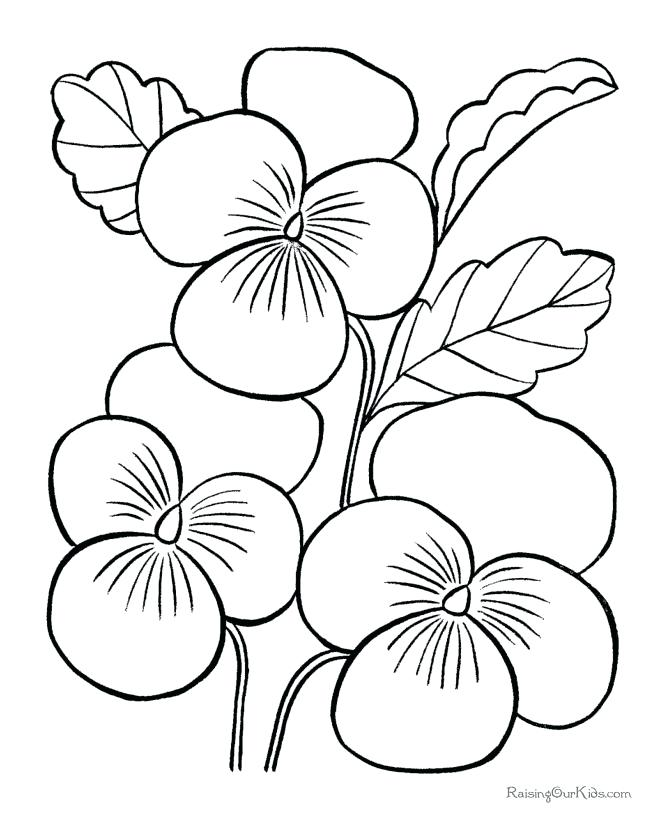 670x820 Flower Pictures To Color As Well As Inspiring Easy Printable