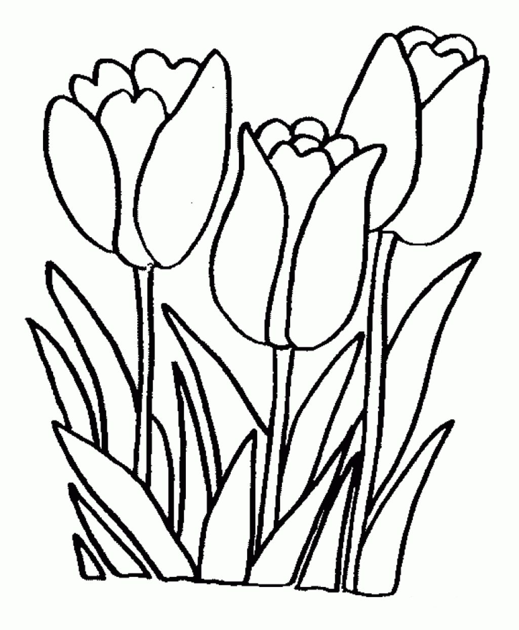 1025x1243 Coloring Pages Flower Free Printable Coloring Pages Easy Printable