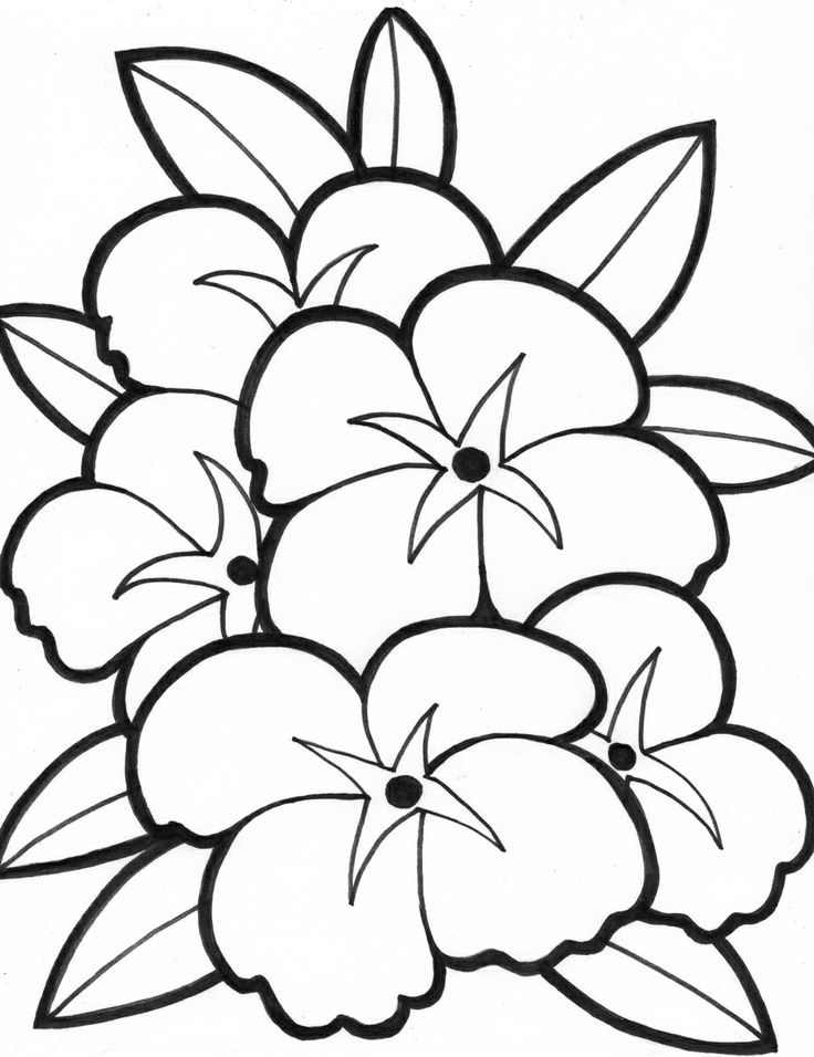 Easy Coloring Pages Of Flowers at GetDrawings | Free download