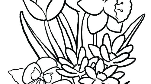 500x280 Easy Flower Coloring Pages