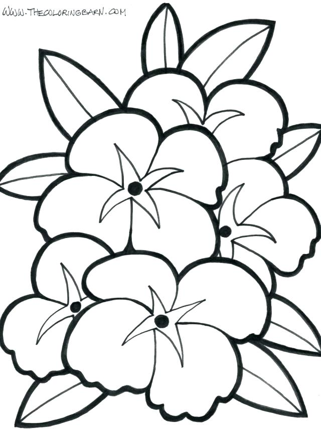 Easy Coloring Pages Of Flowers at GetDrawings.com | Free for ...