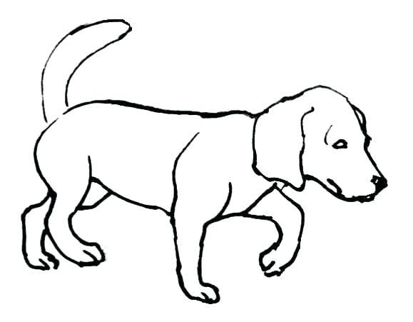 579x451 Cute Coloring Page Doggy Photos Resume Ideas Namanasacom Coloring