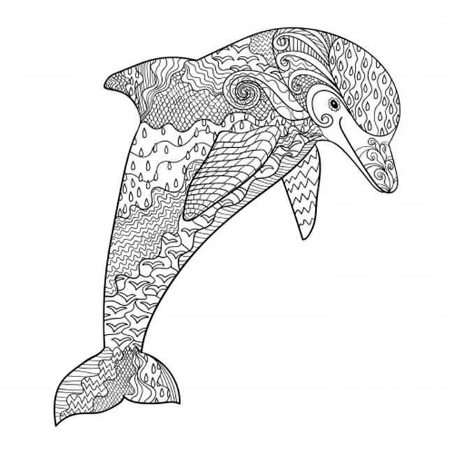 Easy Dolphin Coloring Pages
