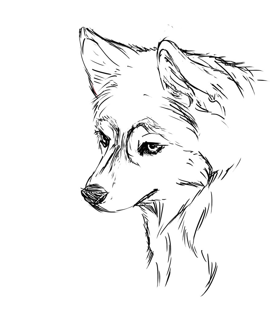 900x1063 Wonderful Design Ideas Cute Puppy Coloring Pages Free Of Husky