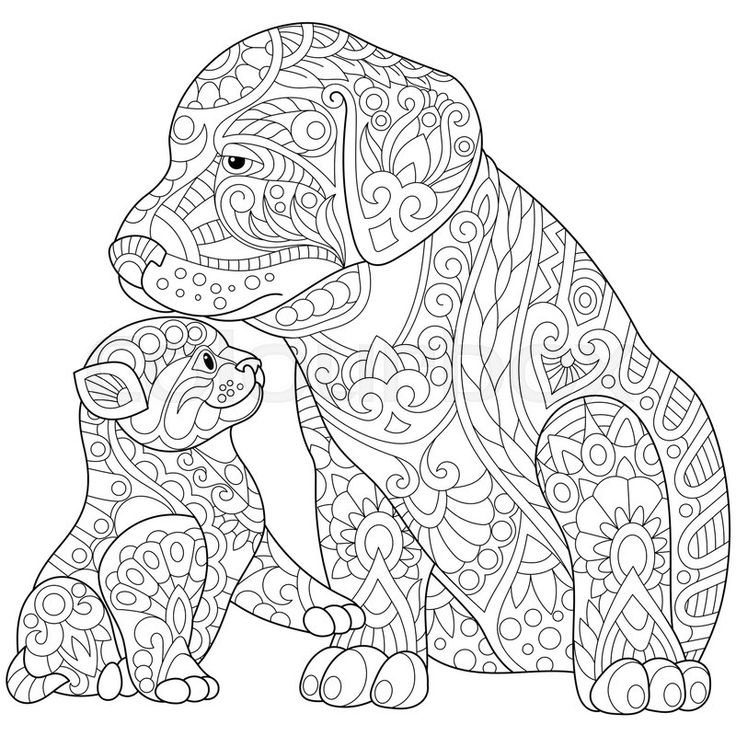 736x736 Easy Adult Coloring Pages Mandala Puppy And Kitten Download