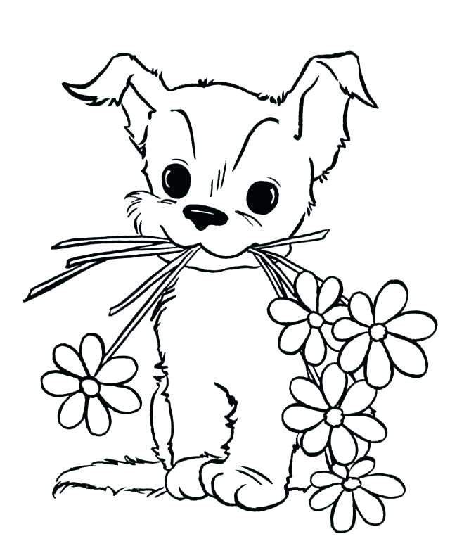 650x796 Coloring Pages Puppy Husky Puppy Coloring Pages Get This Easy