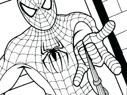 440x330 Spiderman Coloring Page Spider Man Color Pages Amazing Spider Man