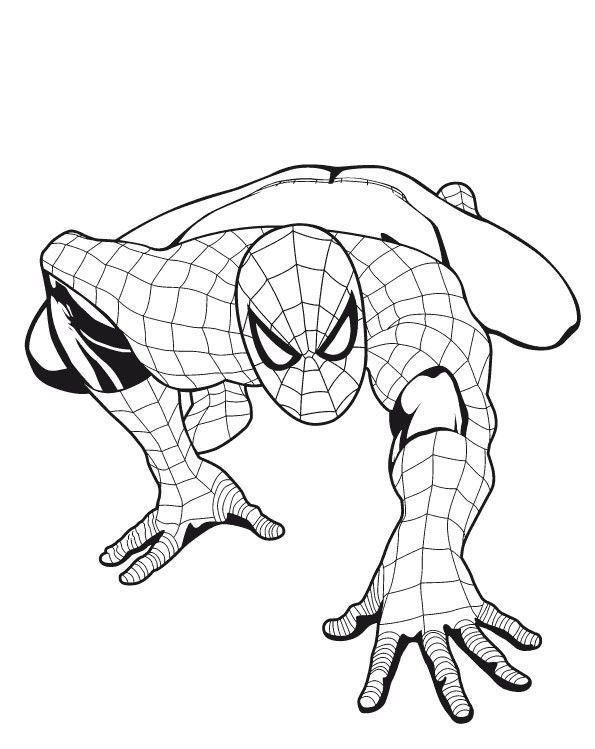 595x749 Spider Man Coloring Page Easy Spiderman Coloring Pages Ultimate
