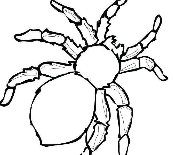 678x600 Spiderman Coloring Pages Easy