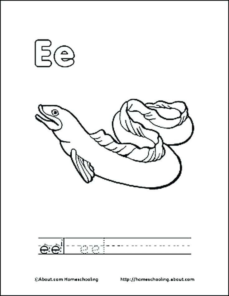 735x951 Eel Coloring Page Letter E Coloring Book Free Printable Pages