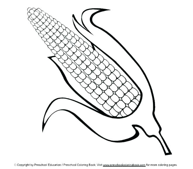 660x577 Eel Coloring Pages Eel Coloring Pages Eel Funny Picture