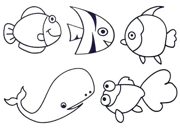 580x424 Electric Eel Coloring Pages Page Colouring