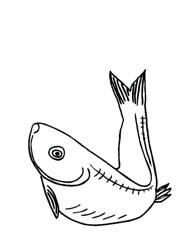 750x1000 Eel Coloring Page