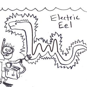 300x300 Electric Eel Image Coloring Page Color Luna
