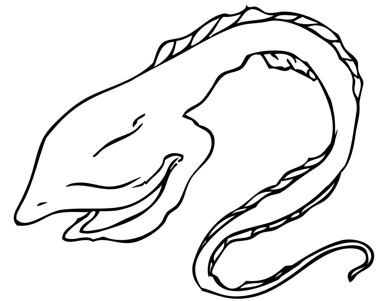 1650x1275 Gulper Eel Coloring Page