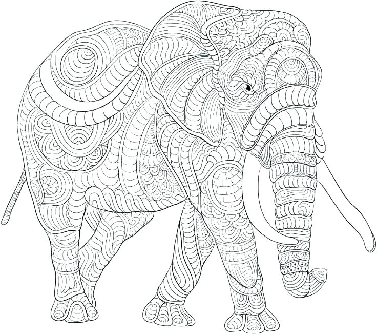 736x651 Elephant Coloring Pages Advanced Elephant Coloring Pages Elephant