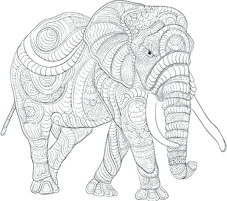 Elephant Coloring Pages For Adults Printable At Getdrawings Com