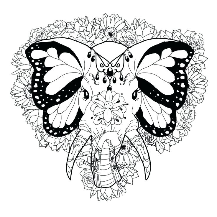 736x736 Elephant Coloring Sheets Elephant Coloring Page Pages Dumbo Color