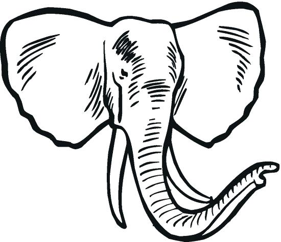 550x475 Elephant Free Printable Elephant Coloring Pages Elephant Coloring
