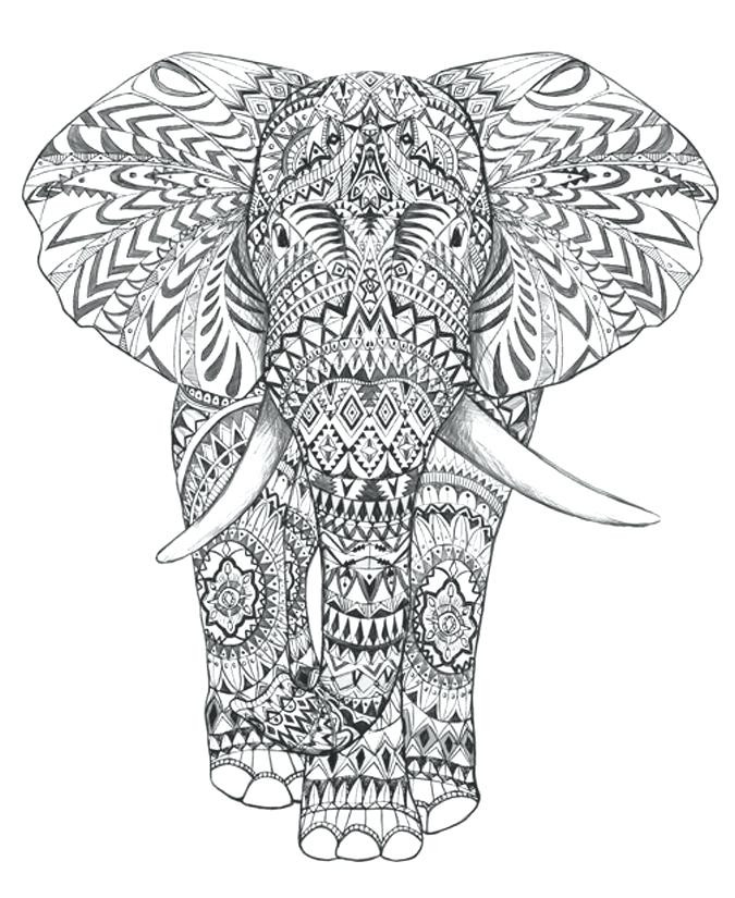 675x825 Free Printable Elephant Coloring Pages For Adults Download
