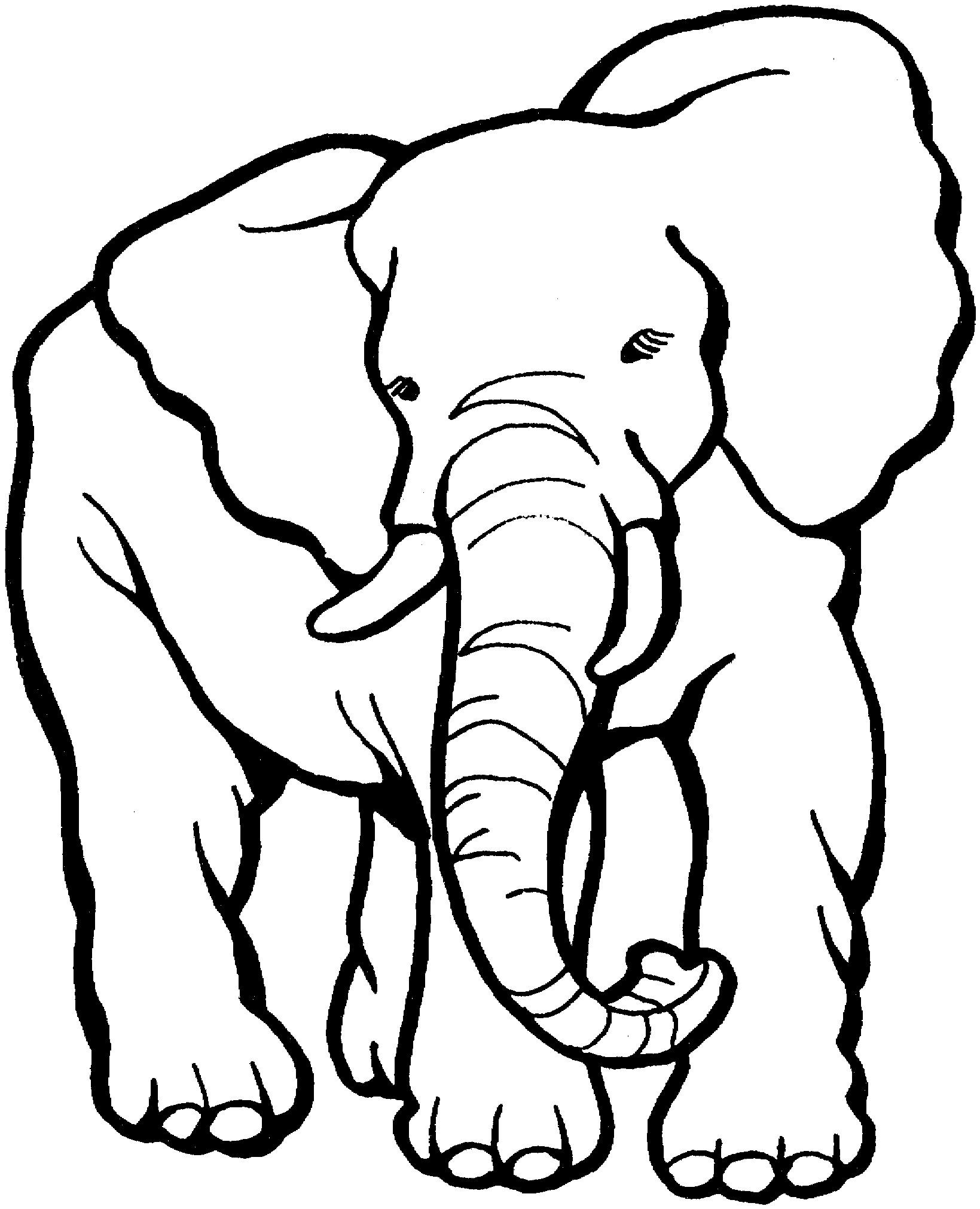 1639x2021 Free Printable Elephant Coloring Pages For Adults New