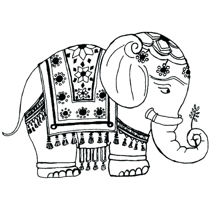 800x800 Cartoon Elephant Coloring Pages Cartoon Elephant Coloring Pages