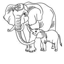 220x220 Elephant Coloring Pages, Drawing For Kids, Reading Learning