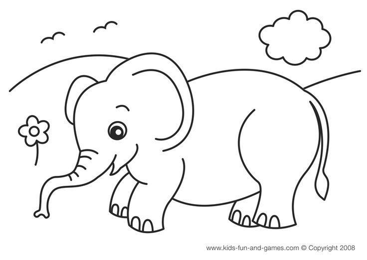 736x522 Elephant Coloring Pages