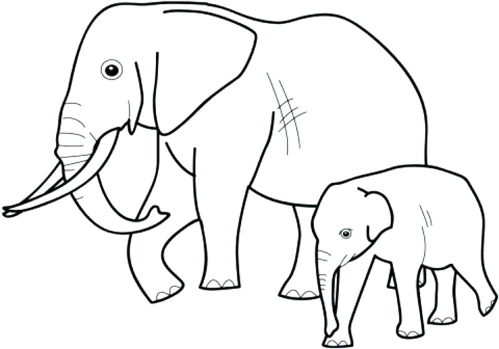 1024x717 Elephant Coloring Pages Coloring Page Elephant Coloring Page