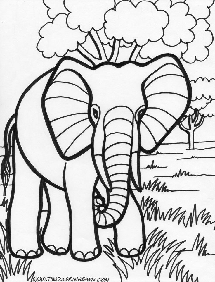 736x964 Best Y Blank Pattern Elephants Images On Coloring