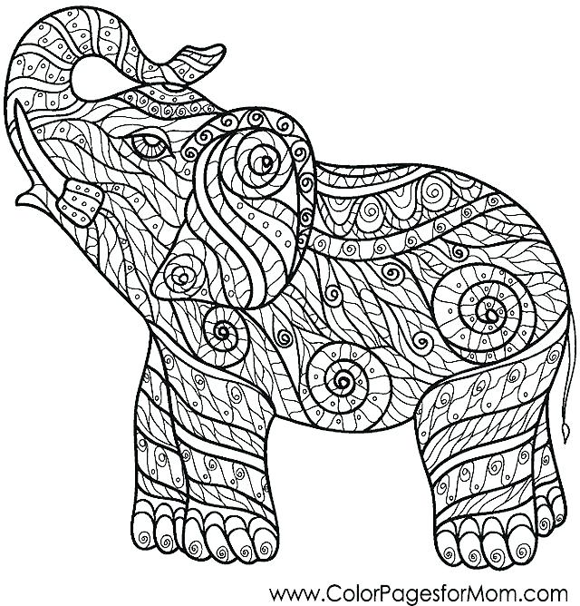 640x668 Baby Elephant Color Page Printable Coloring Pages Medium Size Of C