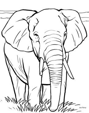 290x368 Color Book Printing Animal Coloring Pages Kids Coloring Pages