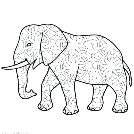 520x520 Best Y Blank Pattern Elephants Images On Coloring Printable