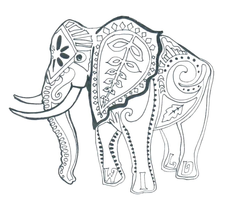 900x781 Coloring Pages Elephants Coloring Page Elephant Coloring Pages