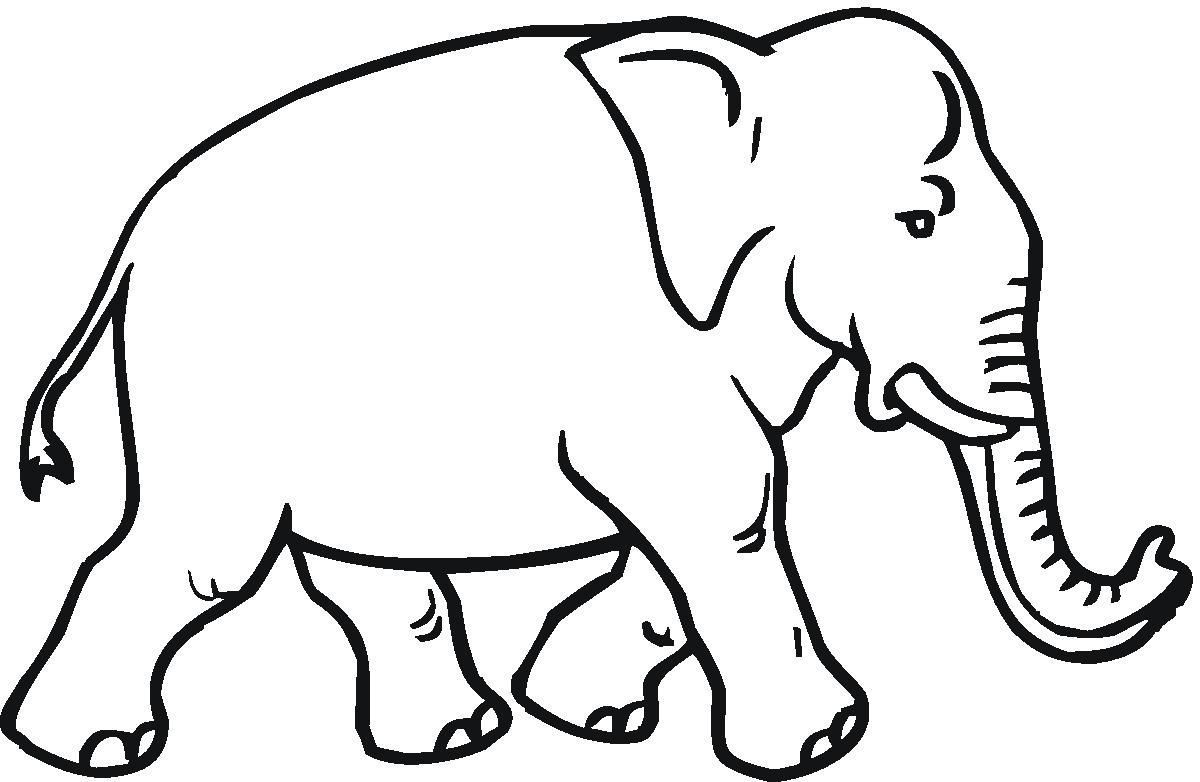 1200x782 Coloring Pages Elephant Coloring Sheet