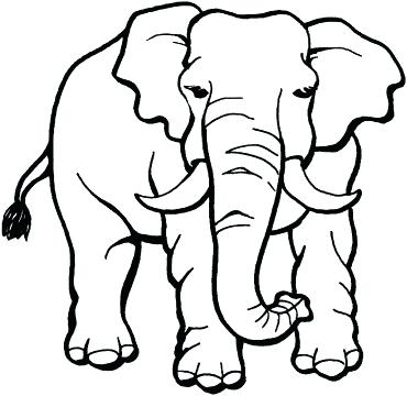 370x360 Coloring Pages Elephant Awesome Baby Elephant Coloring Pages