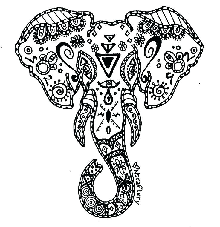 736x760 Elephant Coloring Page Elephant Head Coloring Page Head Free
