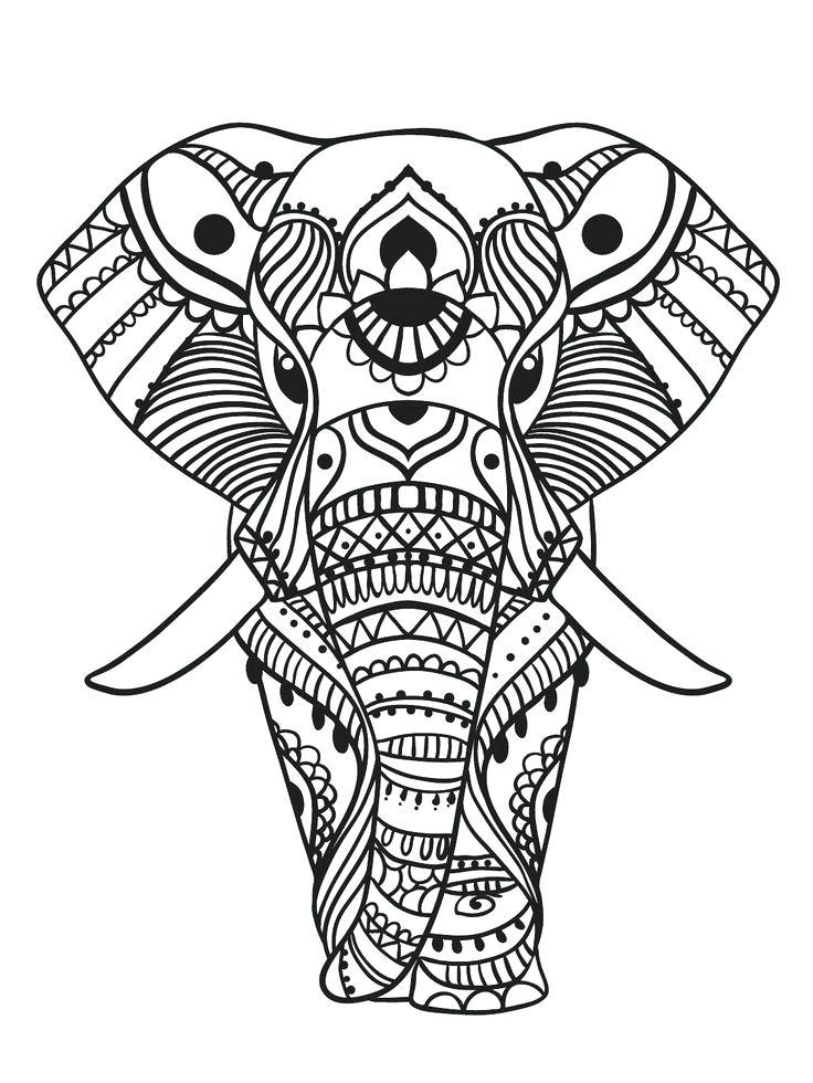 736x980 Elephant Head Coloring Page Color Mind Coloring Pages For Kids