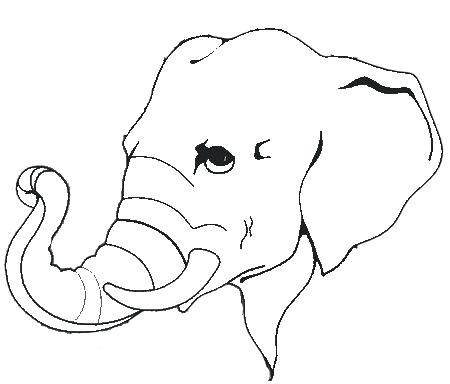 450x384 Elephant Head Coloring Page Elephant Head With Tusks Coloring Page