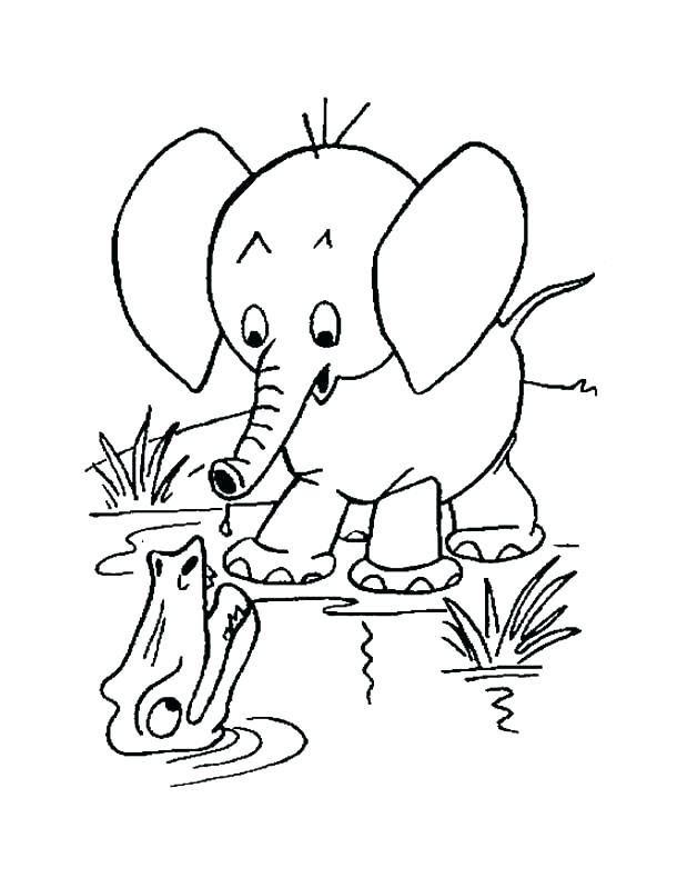 610x790 Cartoon Elephant Coloring Pages Elephant Head Coloring Page