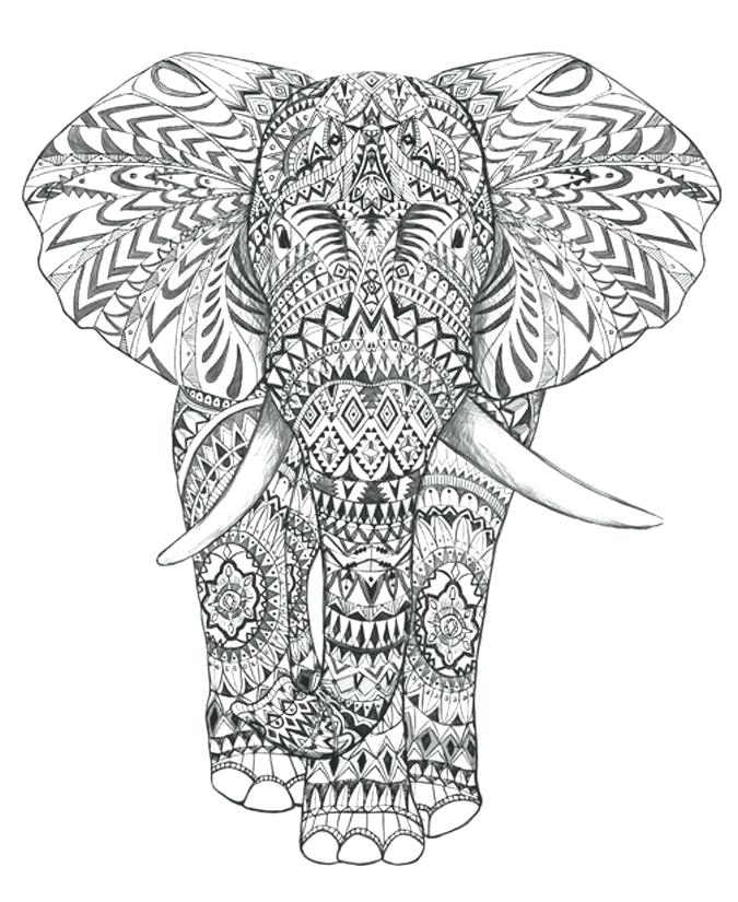 675x825 Coloring Pages Of Elephants Or Coloring Pages Elephant Awesome