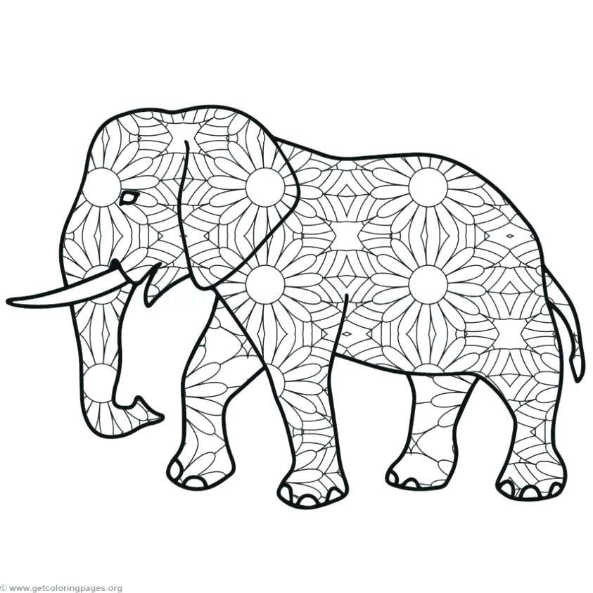 843x843 Elephant Mandala Coloring Pages Coloring Pages Elephant Elephant