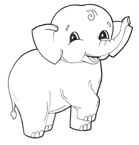 460x480 Baby Seal Coloring Pages Seal Colouring Or Coloring Page Elephant