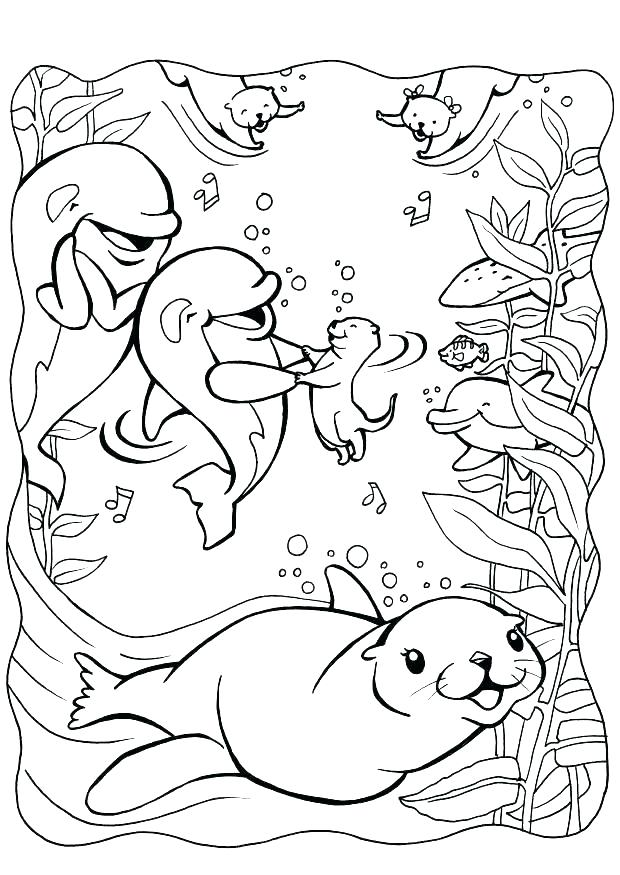 620x875 Seal Coloring Pages Coloring Page Elephant Seal Coloring Pages