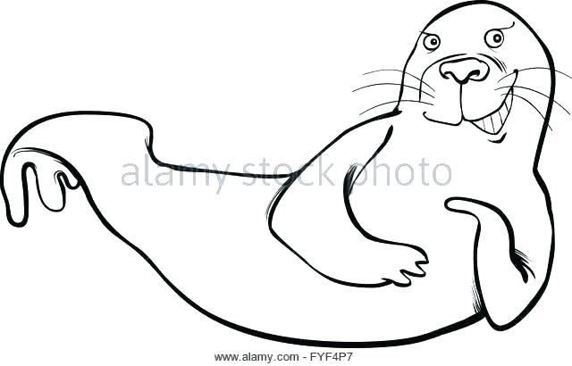 640x410 Seal Coloring Pages Funny Coloring Page Leopard Seal Coloring