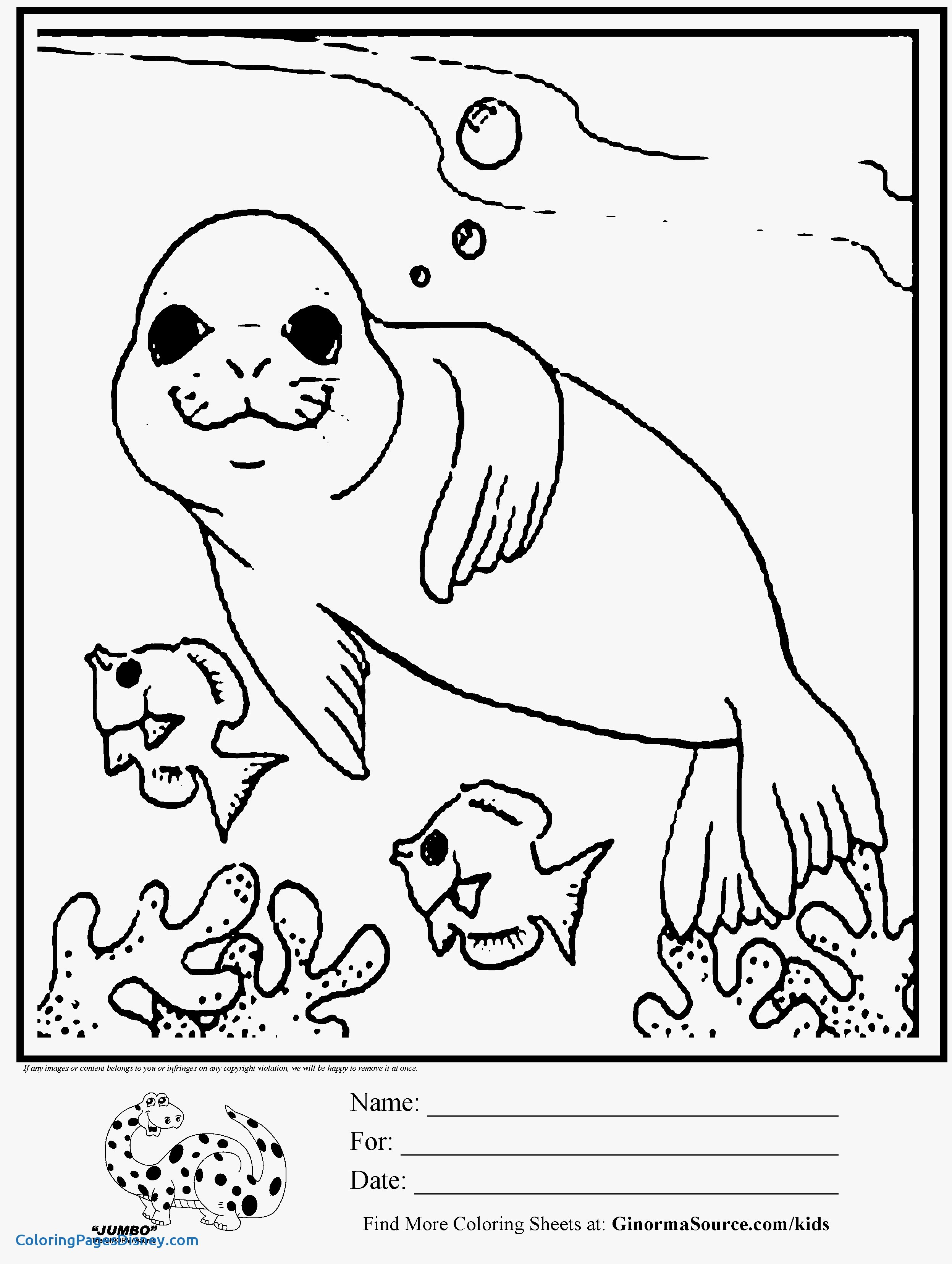 2493x3310 Seals Coloring Pages Elegant Elephant Seal On The Shore Coloring