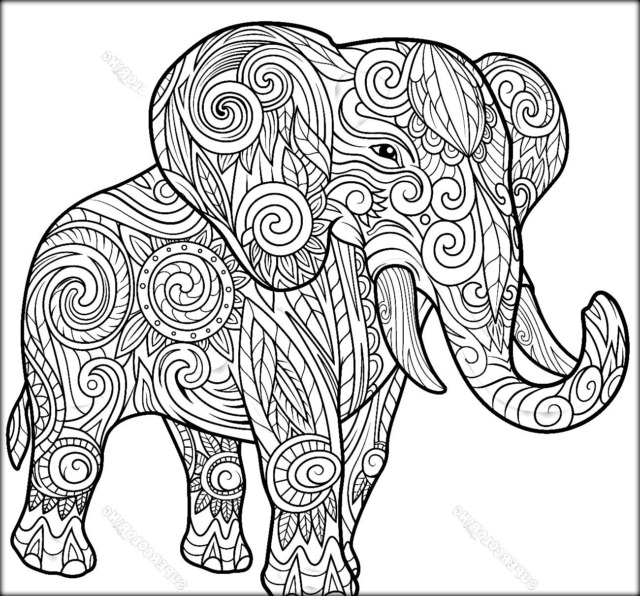 1300x1210 Elephant Ethnic Design Zentangle Coloring Page Cool