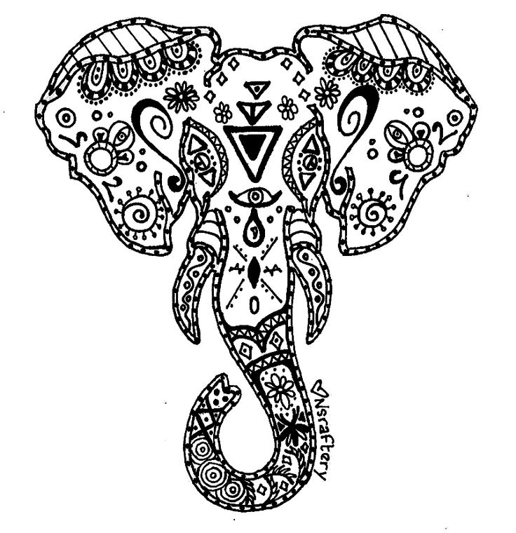 Elephant Zentangle Coloring Pages At Getdrawingscom Free For